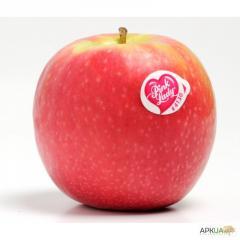 Самоклеящаяся этикетка для овощей и фруктов