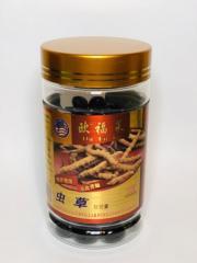 Korditseps liquid Century East of Doyuan in