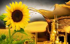 Подсолнечное масло  отработанное