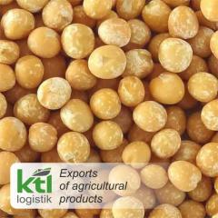 Yellow Peas whole in bulk
