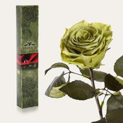 Одна долгосвежая роза Florich в подарочной...