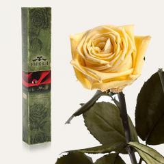 Одна долгосвежая роза Florich в подарочной упаковке. Желтый Топаз 5 карат, средний стебель