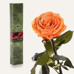 Одна долгосвежая роза Florich в подарочной упаковке. Золотистый Хризоберилл 7 карат, средний стебель