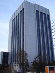 Фасады навесные вентилируемые