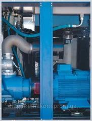 The compressor screw with the direct BK50P REMEZA