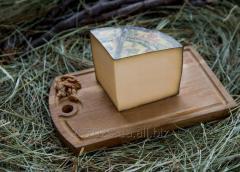 DOBRODAR cheese of firm 50% of Zvenigor
