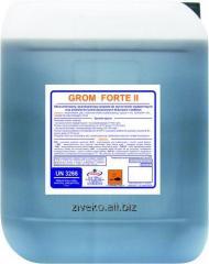 Grom forte II (Ґром форте ІІ)