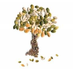 Семена льна масличного Версаль