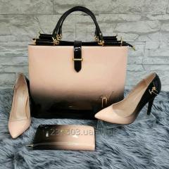 Set: a bag, footwear, a purse, a palatine in one