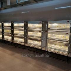 Bruder (cage) for chickens, broilers, quails of