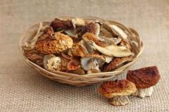 Белые грибы (сушеные)