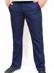 GREGORY брюки