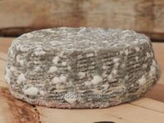 Мягкий сыр из козьего молока с плесенью