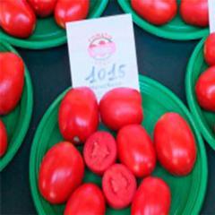 Семена томата F1 дет. Heinz/Lark Seeds 500семян, арт.:1015