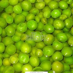 Peas the Beacon to buy the price
