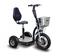 Electric TRIAD 750 XL scooter electroscooter trayk