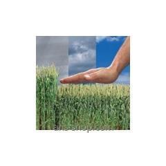 Регулятор роста растений Терпал