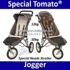 Jogger Special Needs Stroller - the Special