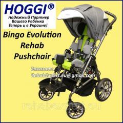 Коляска инвалидная для детей с ДЦП Hoggi...