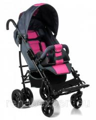 Ambrella the Special Stroller for Rehabilitation