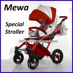 Mewa Special Stroller - Meva the Special stroller