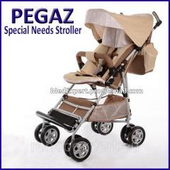 Специальная инвалидная прогулочная коляска...
