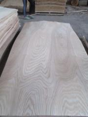 Veneer Ash from 0.8 mm to 1.8 mm