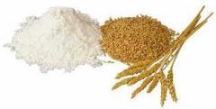 Мука пшеничная Запорожье от производителя, продажа
