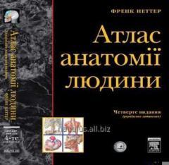 Atlas Anatomist і ї Frank Netter (4-those ukr. -