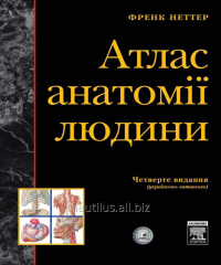 Atlas of Anatomy Frank Netter (4-those ukr-lat.