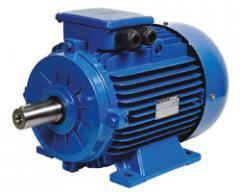 Трехфазный электродвигатель Gamak