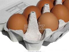 To wholesale eggs