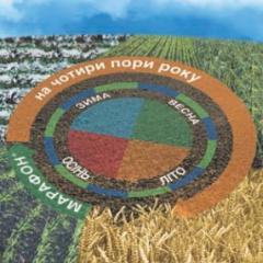 Herbicide Marathon k.s.