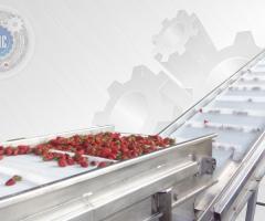 Промышленная, барботажная моечная машина для ягод