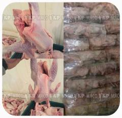 Layer mor.0.9kg-1.1kg (Ukraine) 21.00grn/kg