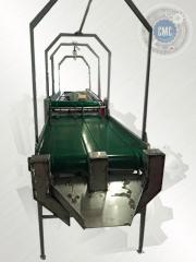Inspection table for sorting of berries of