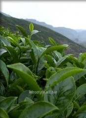 Зеленый чай, отдушка