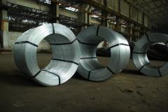 COLD DRAWN LOW-CARBON STEEL WIRE FOR THE