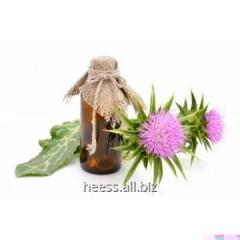 Thistle oil, thistle from 1 kg