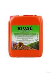 RIVAL®, 5 l; Growth Regulator; Stimulator;