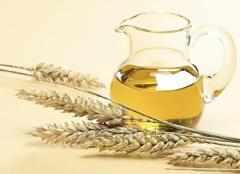 The oil of germs of wheat refined from 1 kg