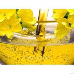 The oil of a primrose of vespers, primrose refined