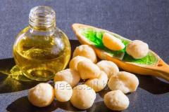 The macadamia nut oil refined from 1 kg