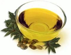 Castor oil (ritsinovy) pharm., castor oil, from 1