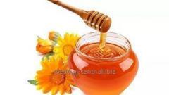 Мёд с подсолнуха, Подсолнечника мед, Мёд подсолнечный
