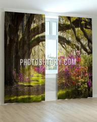 Фотошторы арка из деревьев и цветов ART 0578