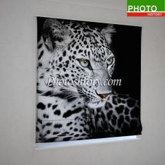 Римские фотошторы красивый гепард 5139
