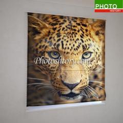 Римские фотошторы взгляд гепарда 5140