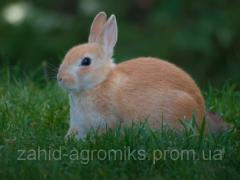 Комбикорма для кролей