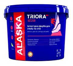 Интерьерная краска для потолков и стен ALASKA TM
